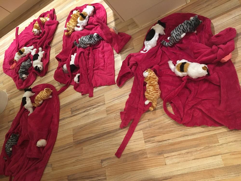 Crazy Cat Lady Kostüm DIY