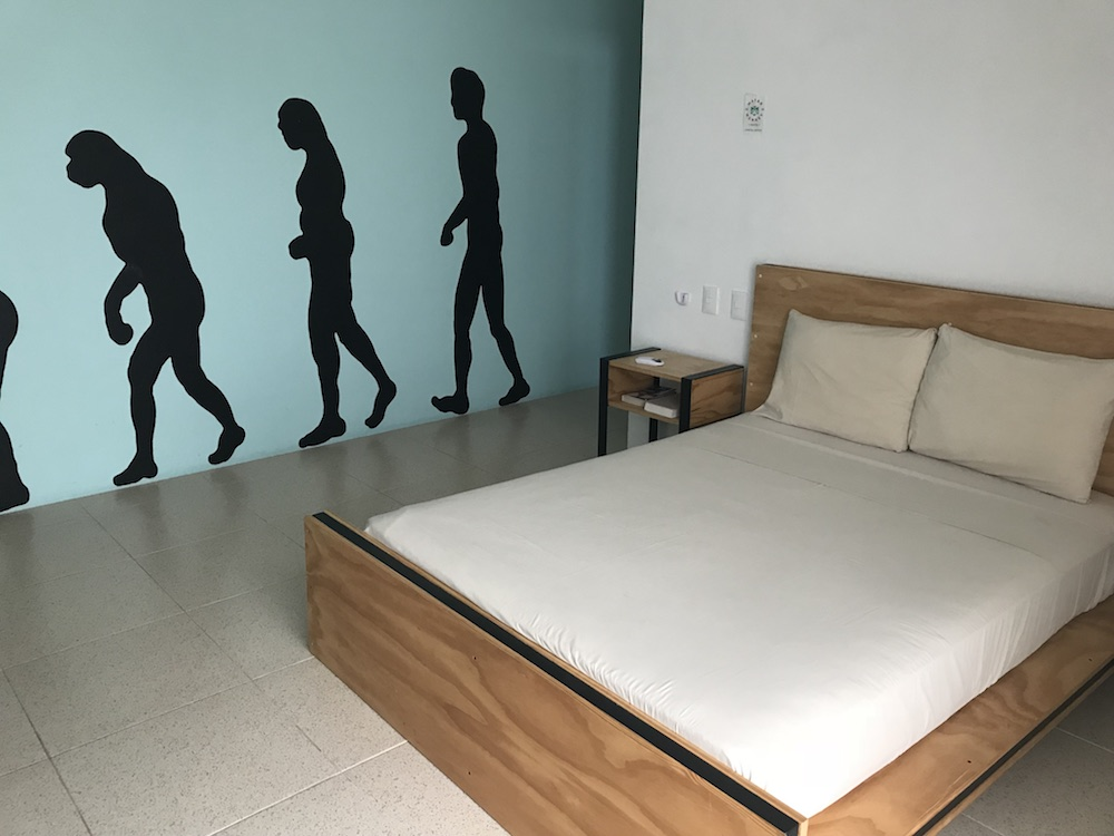 Mayan Monkey Hostel Cancun
