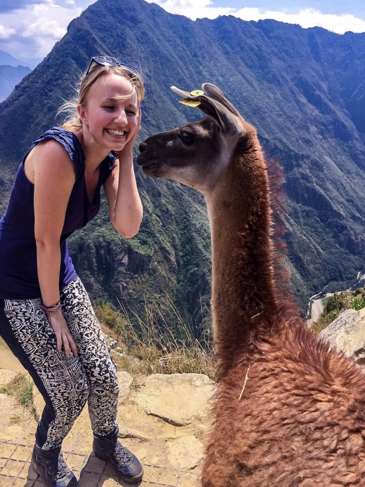 Machu Picchu Tour Erfahrung